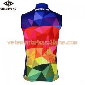 Gilet Cycliste 2017 Siilenyond N018